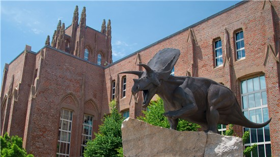 Yale University, Peabody Museum of Natural History